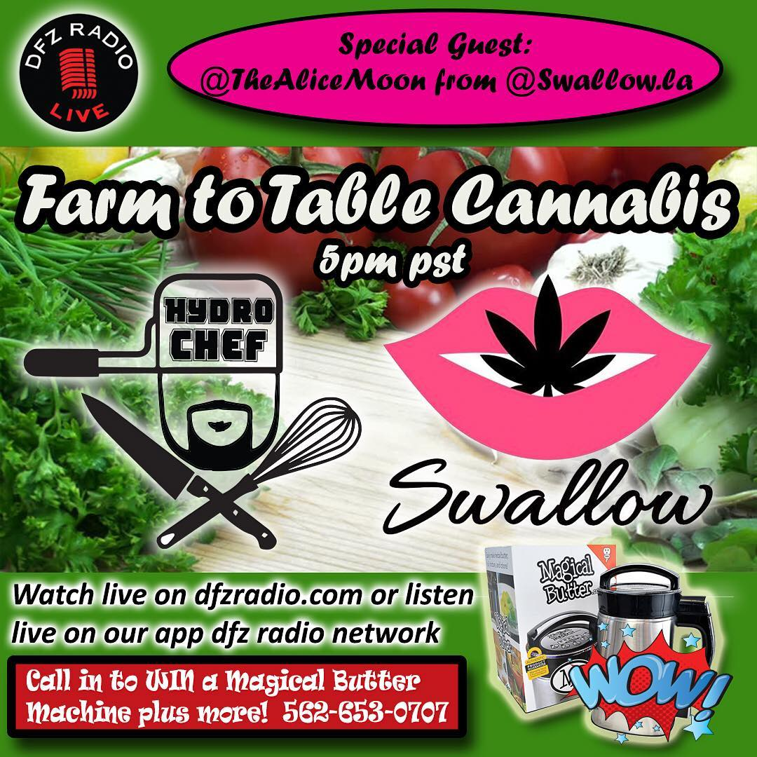 farm to table cannabis