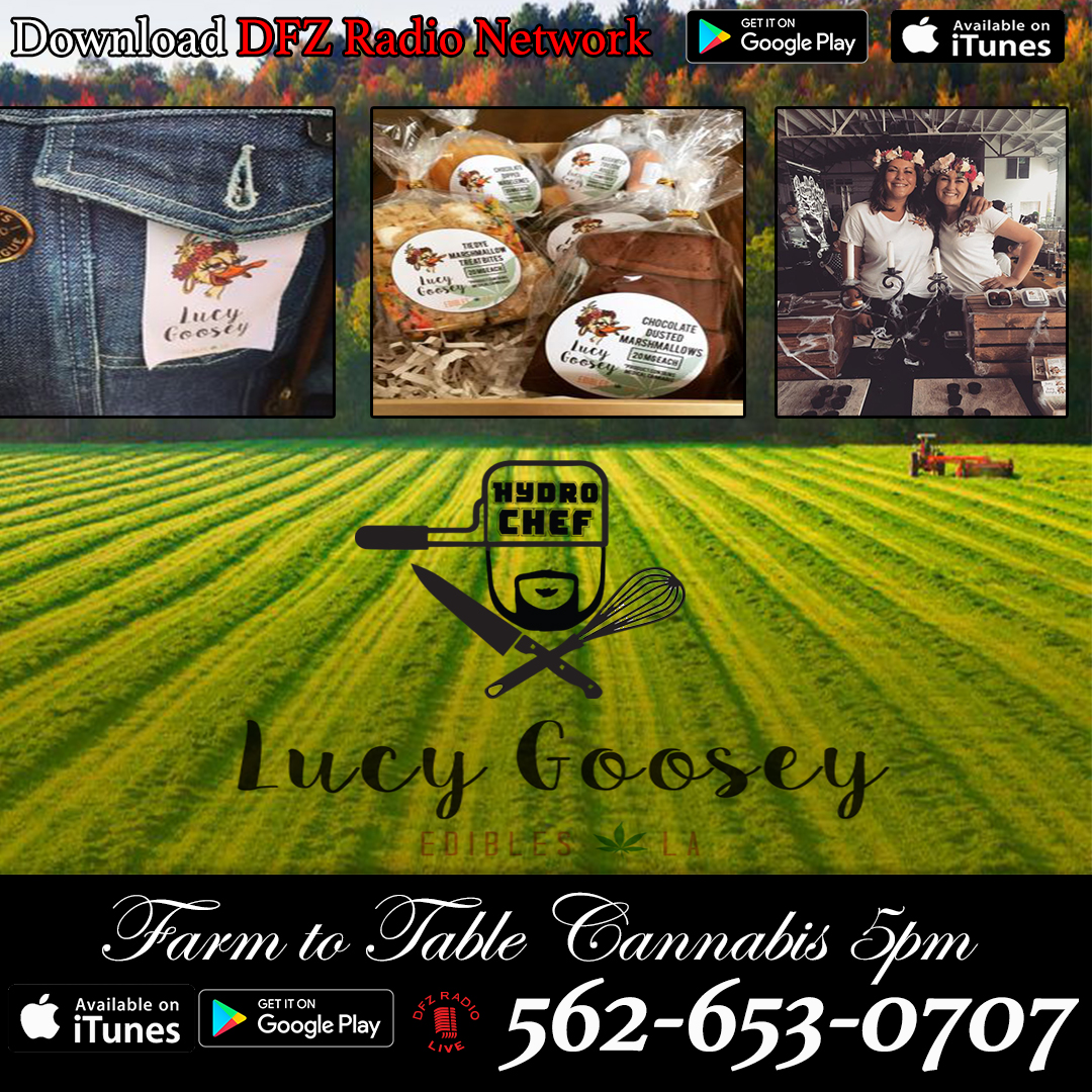 Farm To Tabe Cannabis Ep. # 14 W/ @lucygooseyluv Edibles In-studio Sharing Her Tasty Edibles And Spectrum Hydroponics Interview 11-7-17